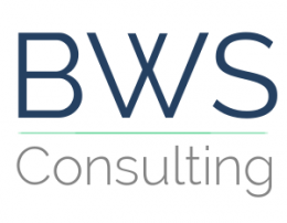 BWSCONSULTING_FUNDO BRANCO